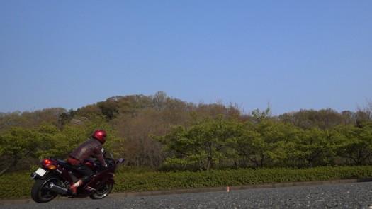 MAH00257 (1).JPG