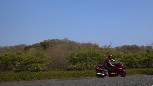 MAH00257 (3).JPG
