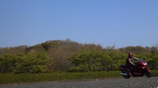 MAH00257 (4).JPG
